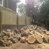 Logs cut in manageable sizes for customer, Horsham