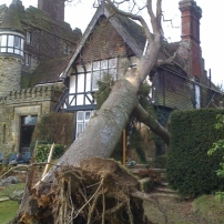 Rescue house from fallen oak tree at Horsted Keynes, Mid Sussex